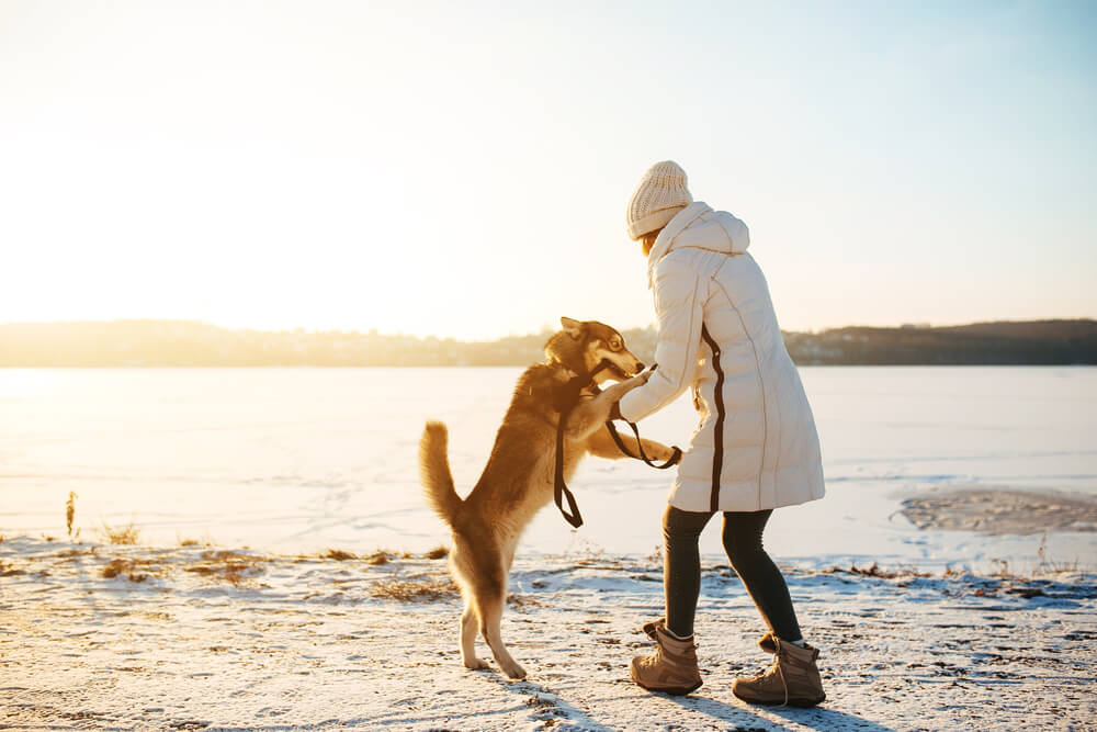 woman playing with dog int he winter