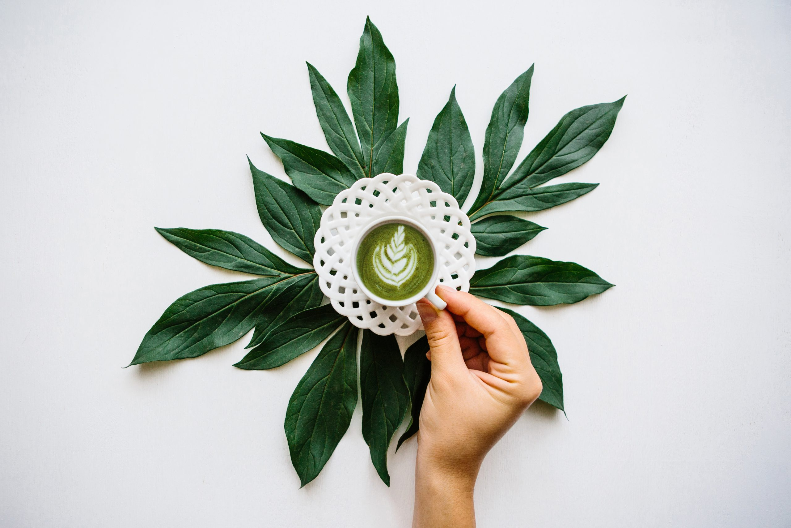flat lay of matcha latte on a coaster surrounded by dark green leaves, a hand reaches in to grab the latte
