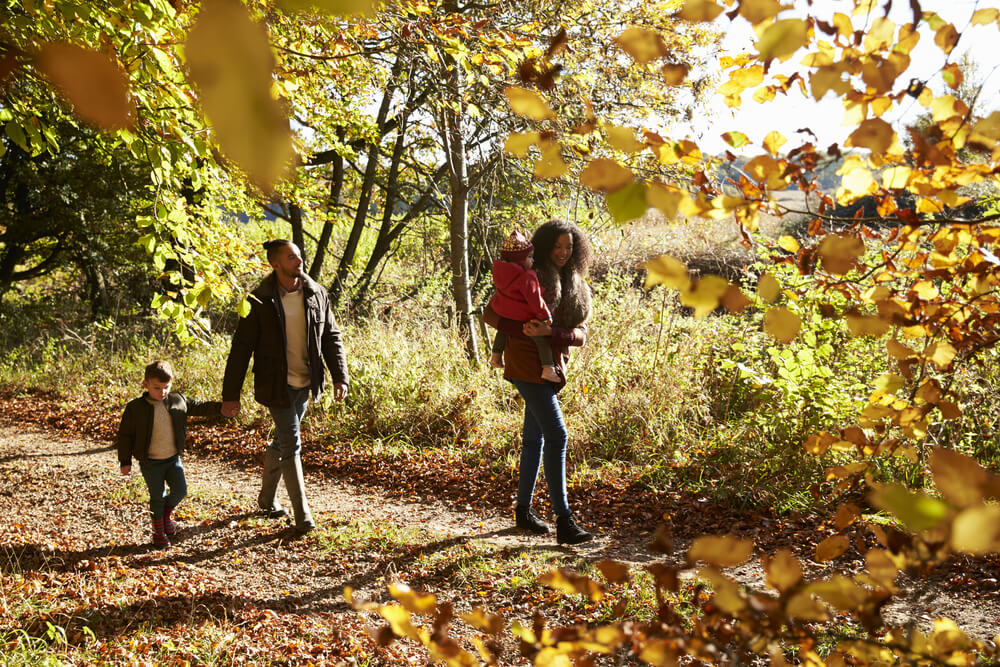Family out for a walk in the forest during the Fall